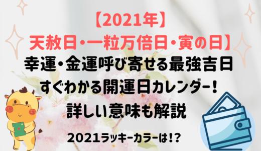 【2021年天赦日・一粒万倍日・寅の日】幸運も金運呼ぶ最強吉日・開運日カレンダー!詳しい意味も解説