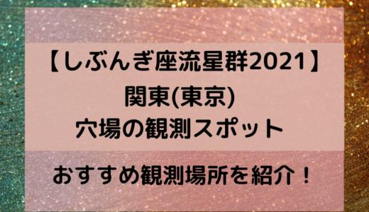 しぶんぎ座流星群2021関東(東京)の観測スポットで穴場のおすすめ場所どこ?